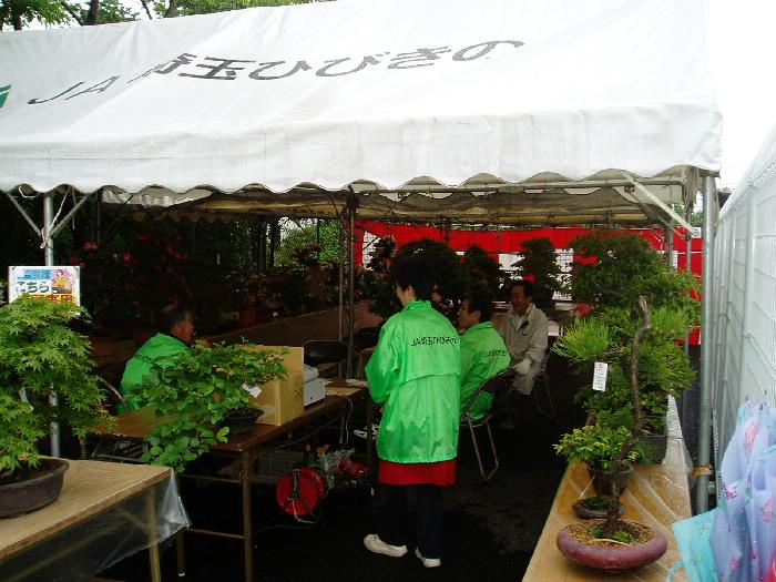 盆栽展示販売所