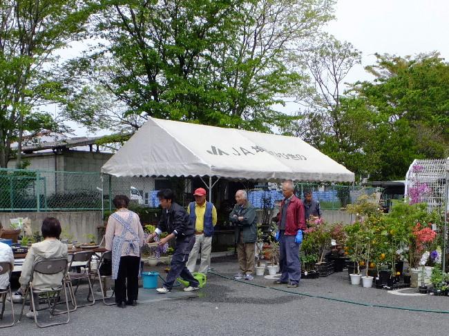 こだま館「花植木祭り」開催