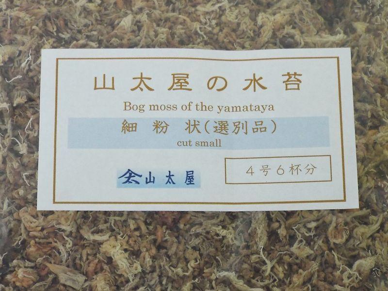 盆栽専用水苔